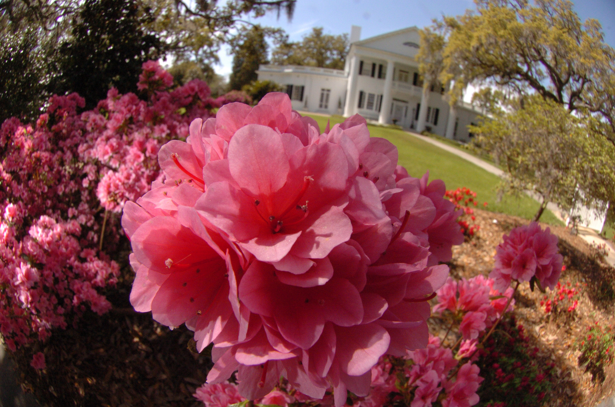 Why Valdosta Is The Perfect Town To Share With Your Special Someone